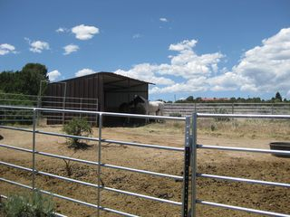Horse Barn 2010 002